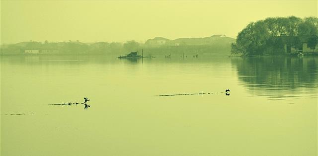 听,风的声音(诗歌) - 深秋 - 深秋的故事的博客