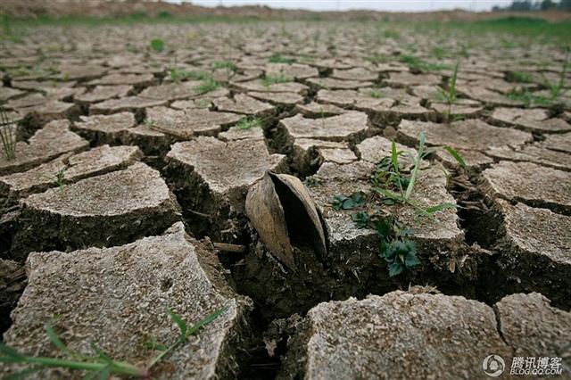 中国人民和全人类请不要忘记那些支持建三峡大